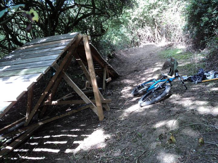 wooden ramp in woods