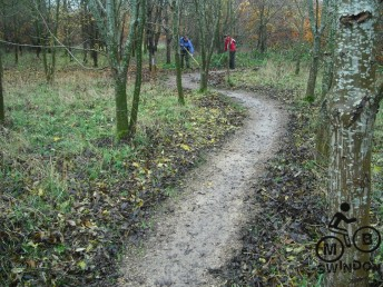 After raking leaves off trail.