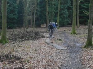 Bike riders on some slabs in the Forest of Dean.