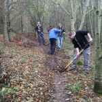 Group of people raking leaves off a trail.
