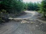 Rocks on mountain bike track.