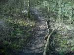 Muddy trail.