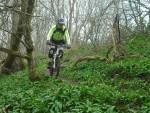 Mountain bike rider on steep single track.
