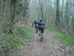 Westridge Wood.