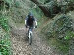 Mountain bike rider on steep track.