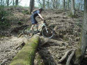 MB Swinon rider in the Wyre Forest.