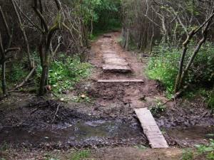Rock steps and path.