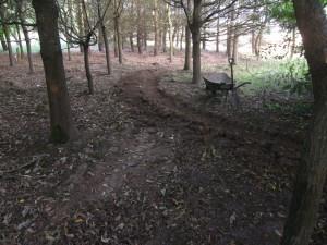 New trail taking shape at Croft Trail in Swindon.