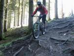 Rooty drop at Forest of Dean