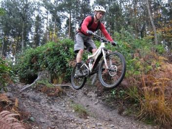 Singletrack at Swinley Forest.
