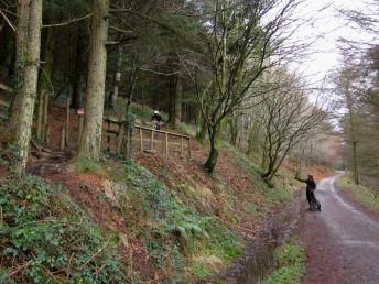 The Wall at Afan