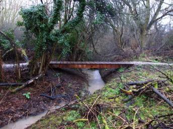Bridge at mountain bike trail in Swindon.