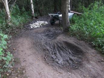 Muddy bog at mountain bike trail