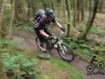 Hopton Woods mountain bike trail.