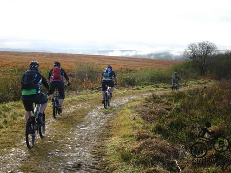 Mountain biking near Brechfa