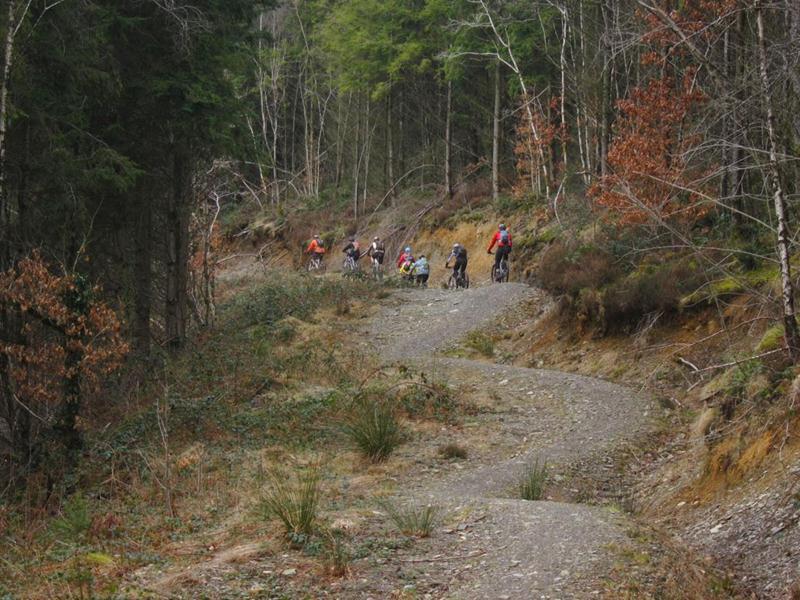 Blue climb at Brechfa trails.