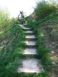 Cheeky steps