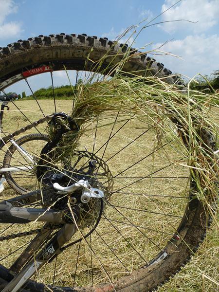 Grass in bike wheel