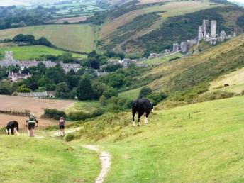 Purbeck-Day 2 Descent to Corfe (2)