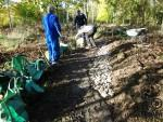 Fixing boggy trail.
